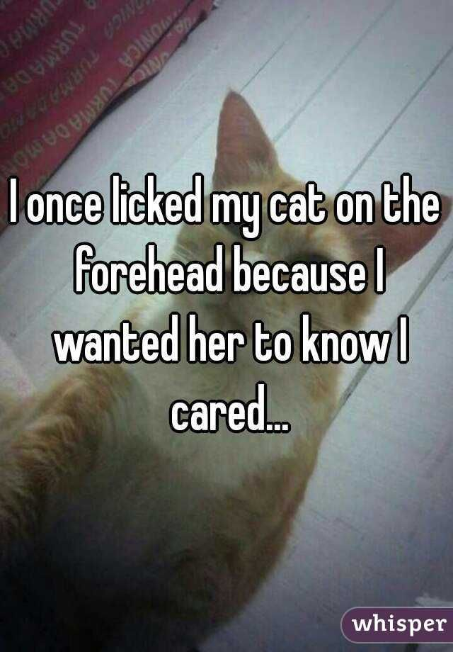 I once licked my cat on the forehead because I wanted her to know I cared...