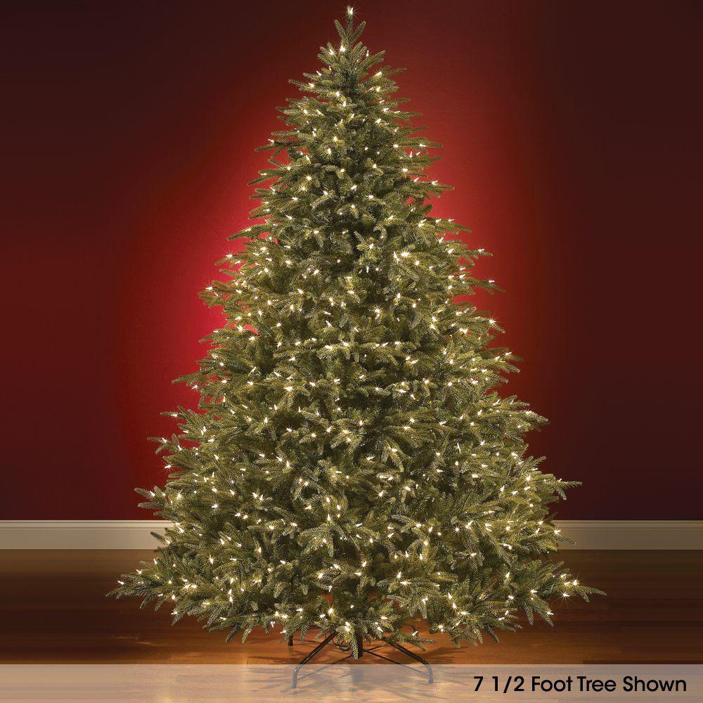 2112b77da7a The World s Best Prelit Fraser Fir (6.5  Slim LED). - Hammacher Schlemmer