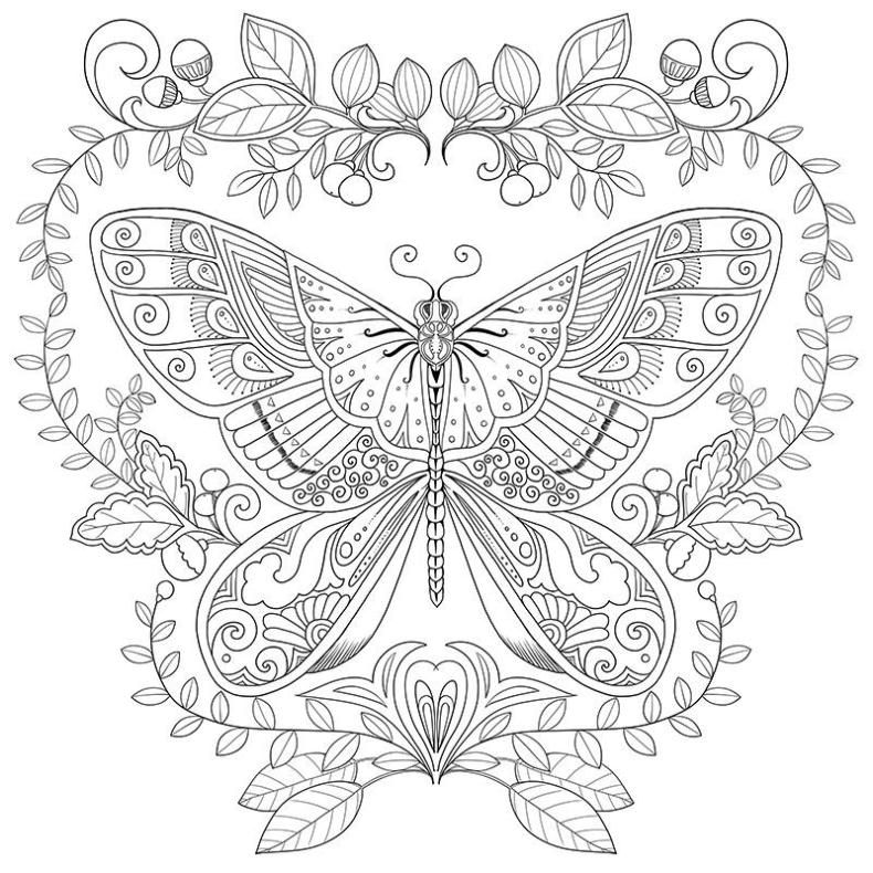 Intricate Butterfly Pages Coloring