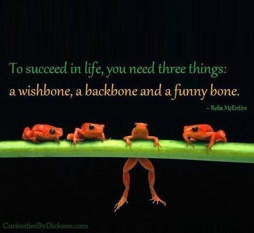 Image result for funny backbone