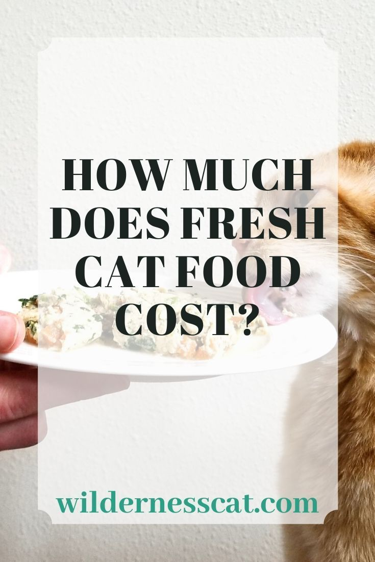 How much does nom nom cat food cost food cost cat food