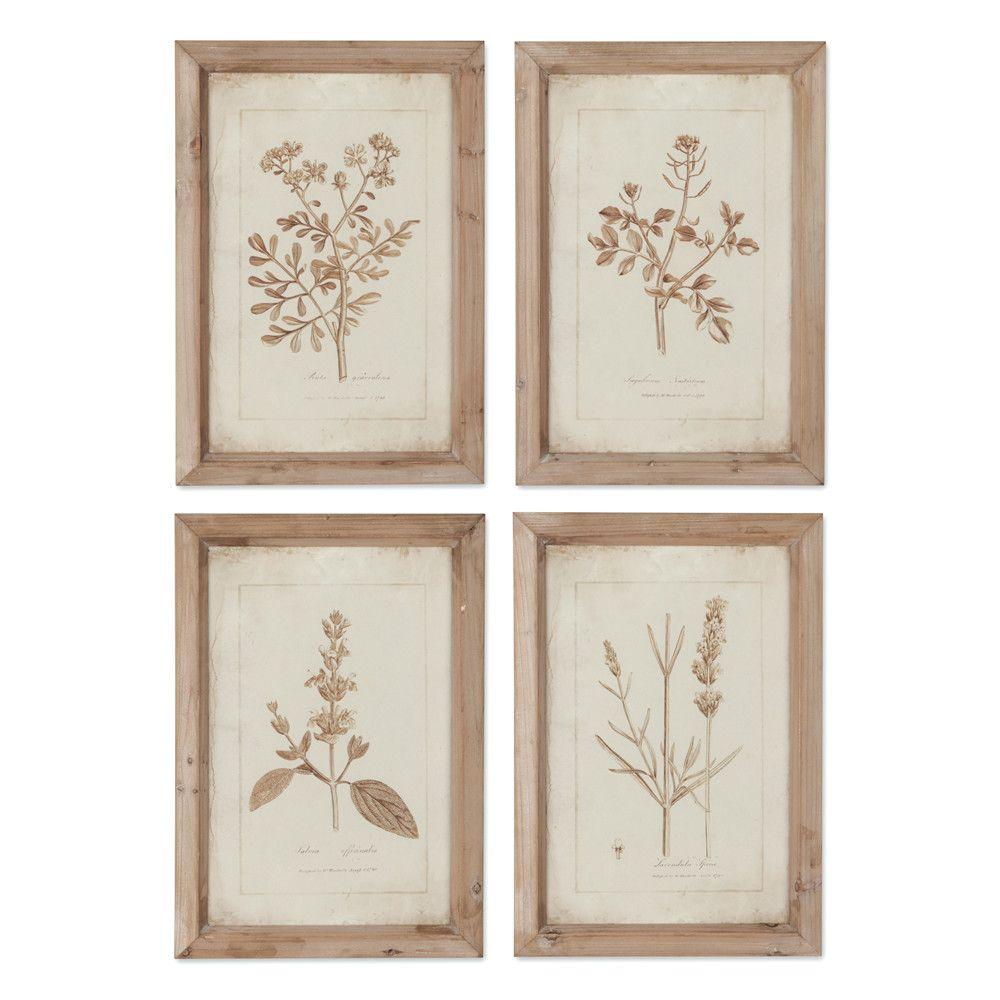 Napa Home and Garden Sepia Herbes Botanical 4 Piece Framed