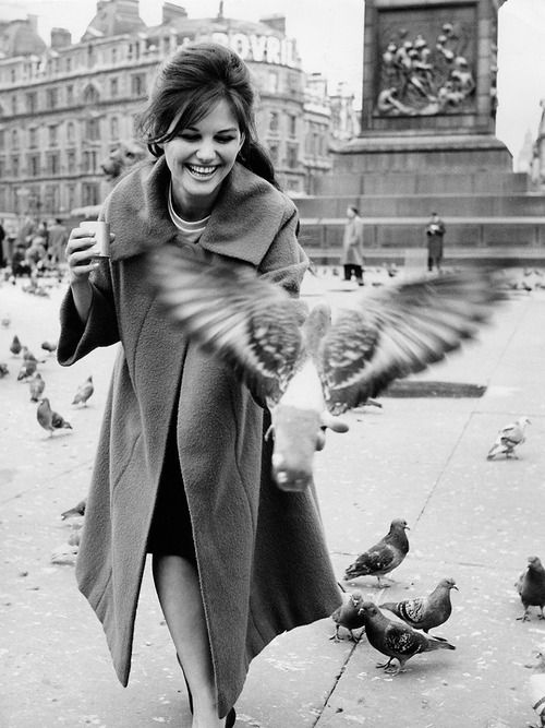 20th-century-man:  Claudia Cardinale