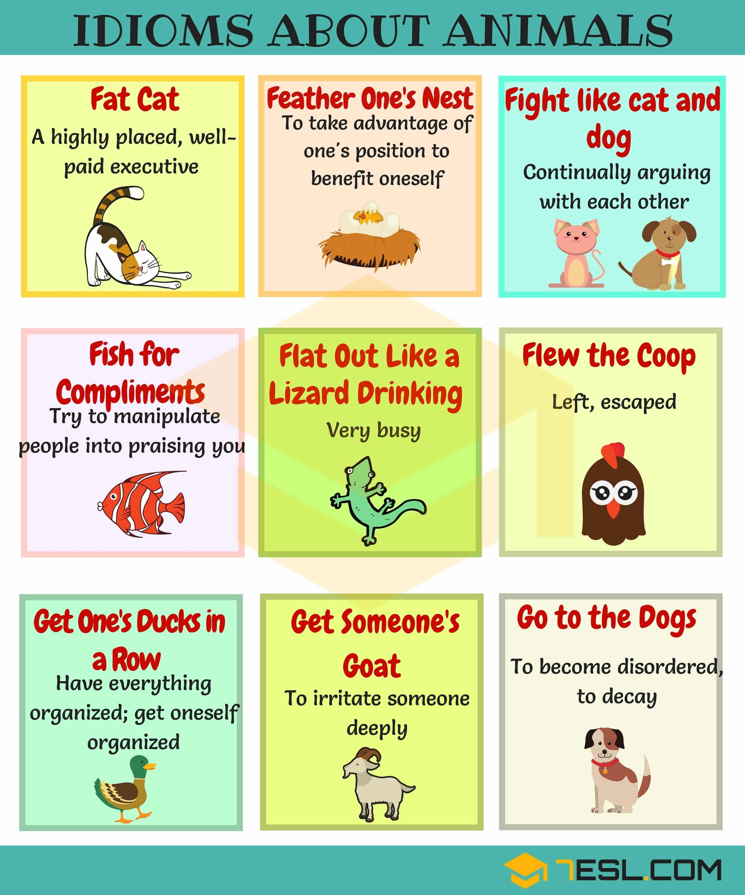 Animal Idioms 165 Useful Animal Idioms From A Z