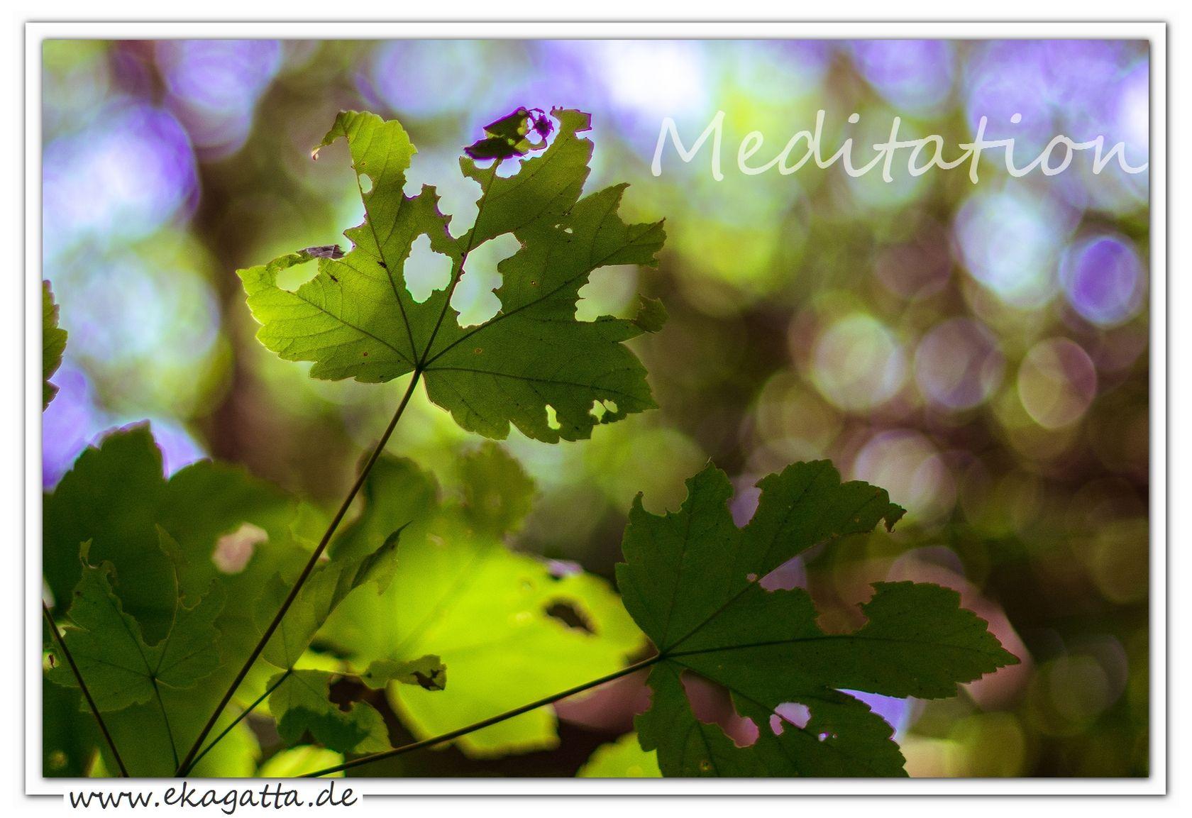 """Johann Wolfgang von Goethe: """" Meditation bringt uns in Berührung mit dem, was die Welt im Innersten zusammenhält."""" * www.ekagtta.de *"""