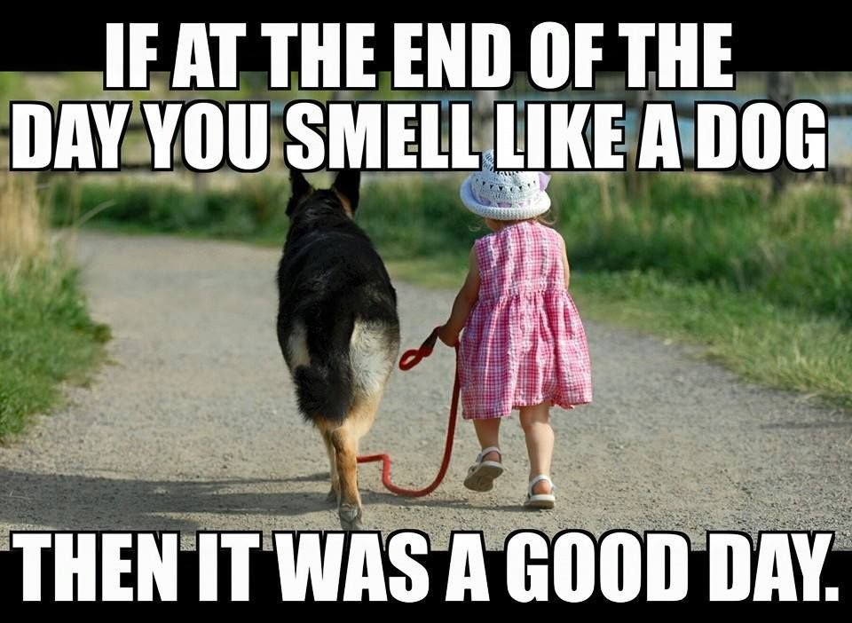 If At The End Of The Day You Smell Like A Dog It Was A Good Day