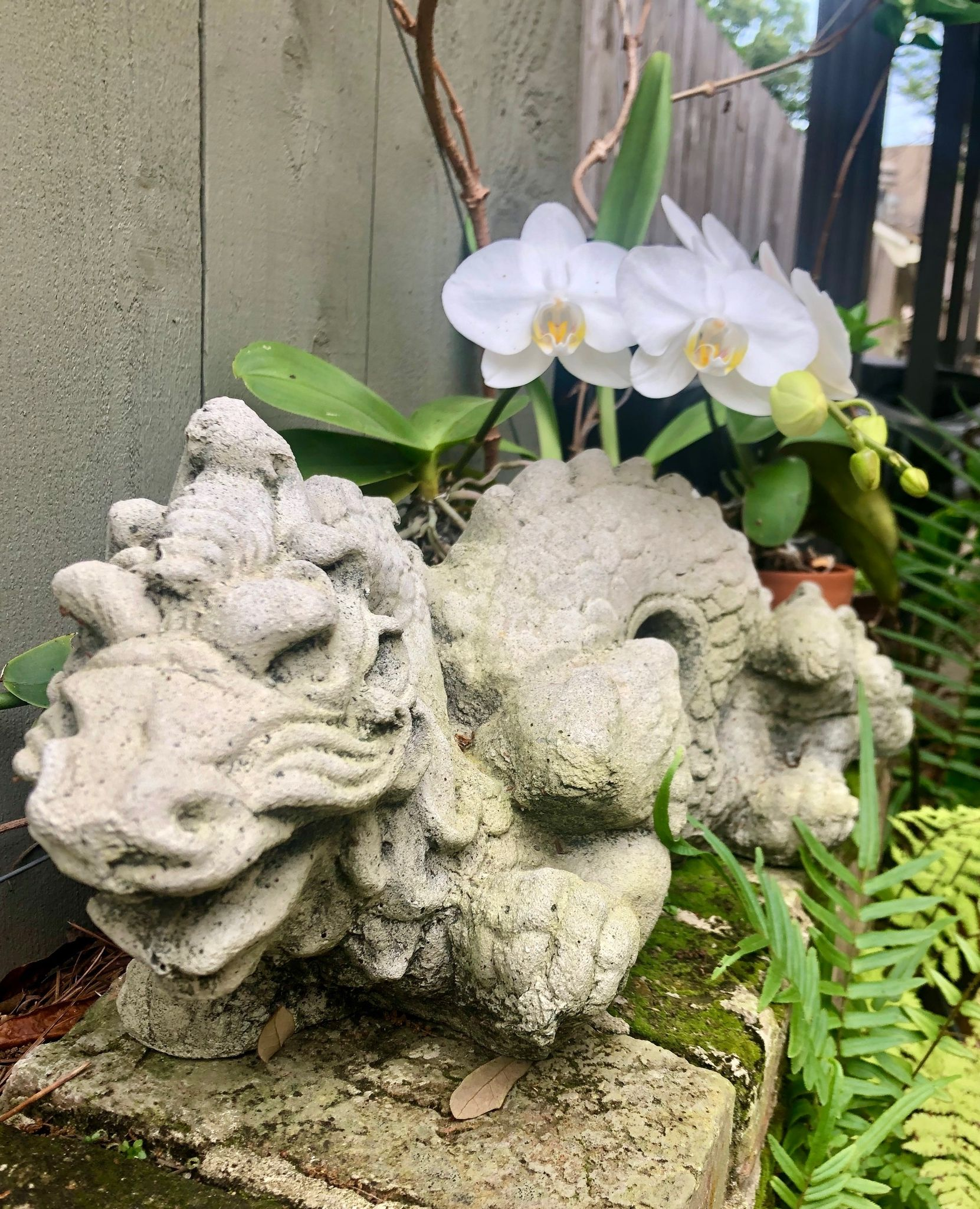 Tell us - where is the most unexpected place you find inspiration?  #interiordesign #design #susancurriedesign #inspire #luxuryliving #houseenvy #neworleansinteriors #neworleansinteriordesign #nolainteriordesigner #interiordesigninspiration #interiordecor #inspiration #designinspo