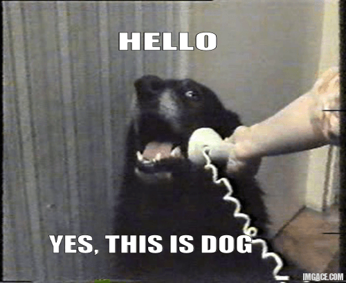Cold-calling phone company hit with record fine | Funny ...