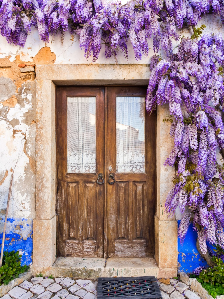 Pros and Cons of Whimsical Wisteria | Town & Country Living
