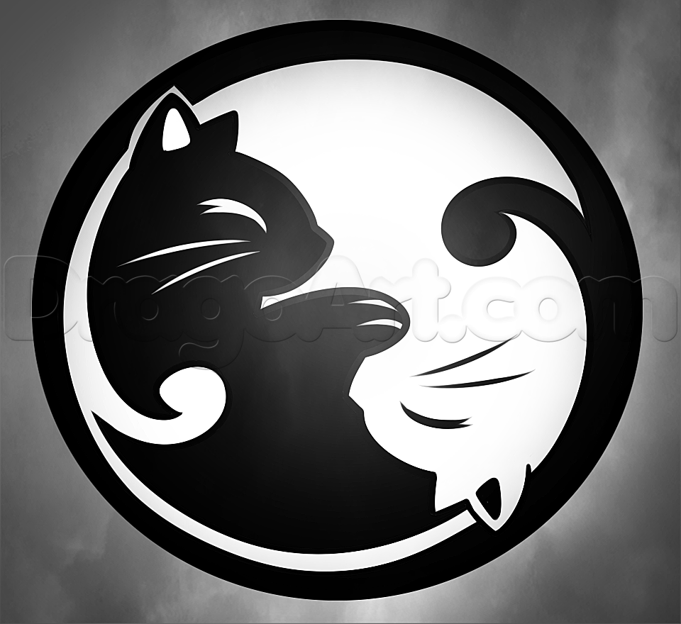 how to draw a cat yin yang Pinterest