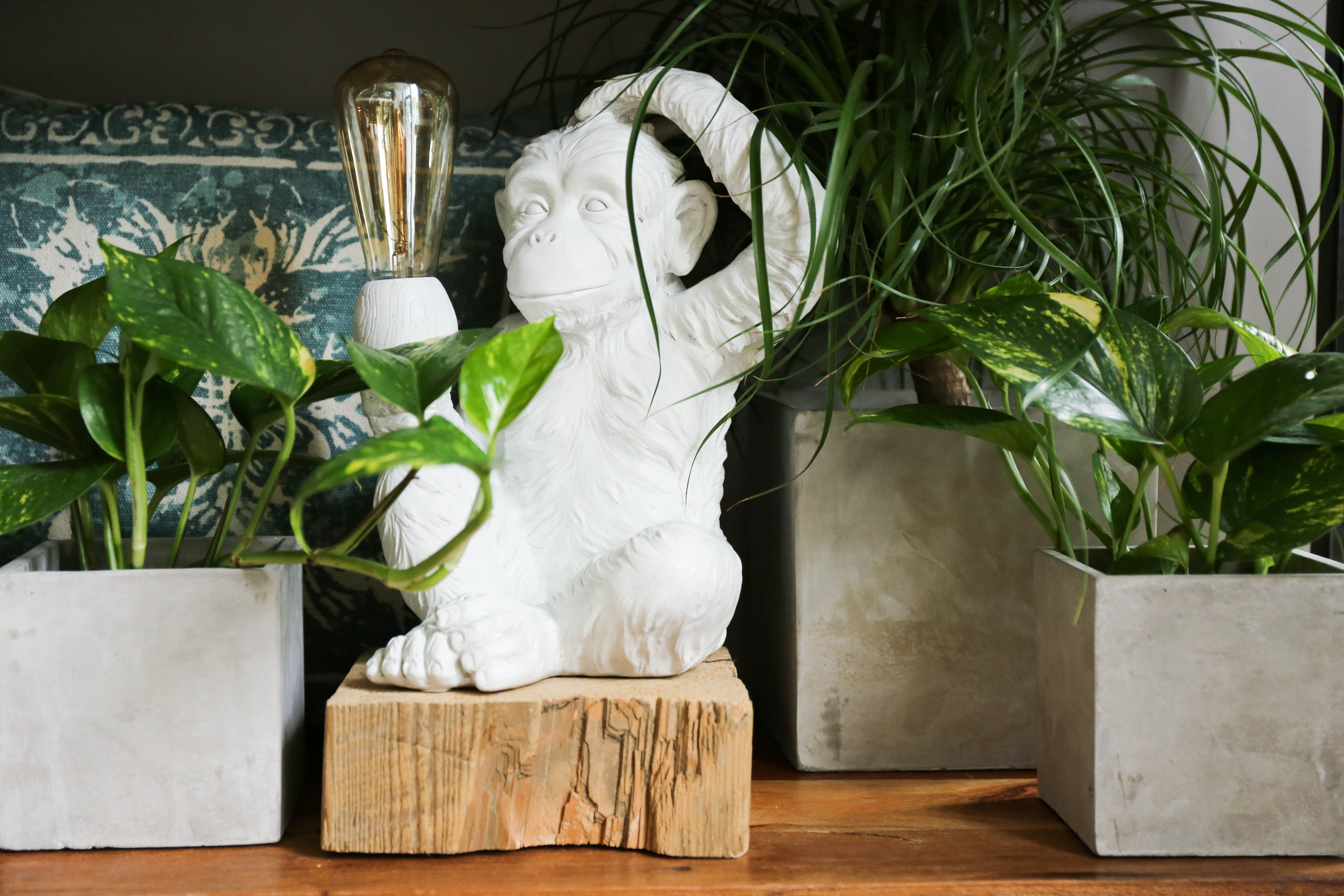 Lampe singe Simia | Simia monkey lamp | singes | Pinterest