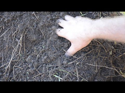 Not-so-hot compost. Visit http://www.jandjacres.net for more hobby farm activities. Well, I have already learned a few things about how I will be doing compost differently from ...