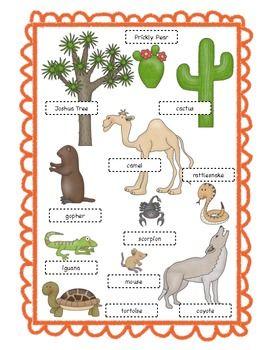 desert habitat desert animals desert