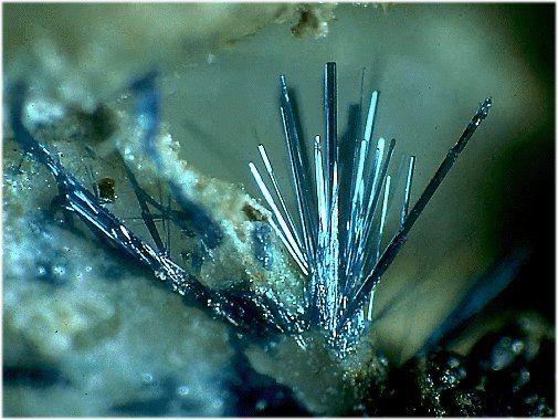 Connellite (copper/sulfur). Tooele Co. Utah