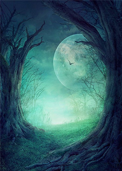 15x22m Green Forest Photography Backdrops Fantasy Sky Moon - halloween backdrop