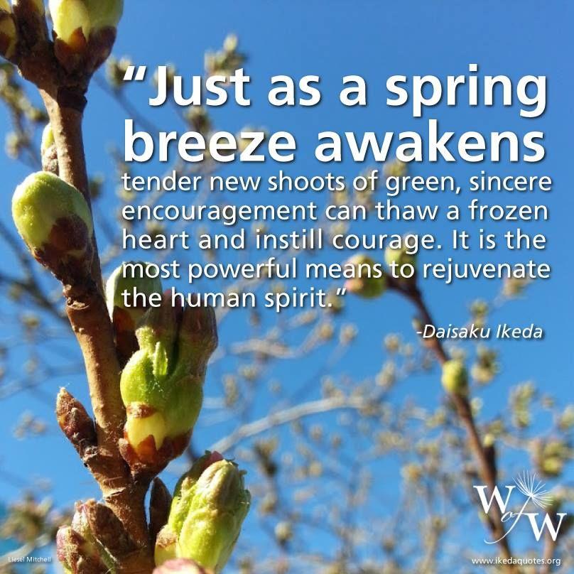 Sensei's Words of Wisdom | Encouragement, True words ...