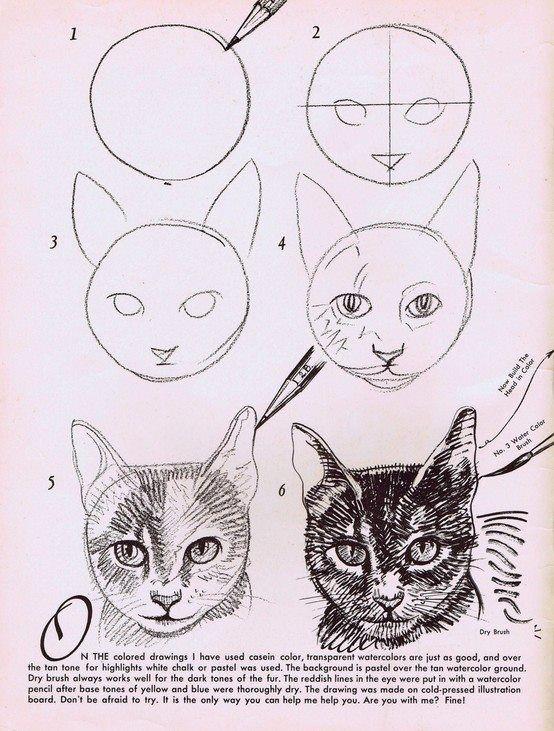 Pin Von Kristina Halaszova Auf Draw Art In 2019 Zeichnungen