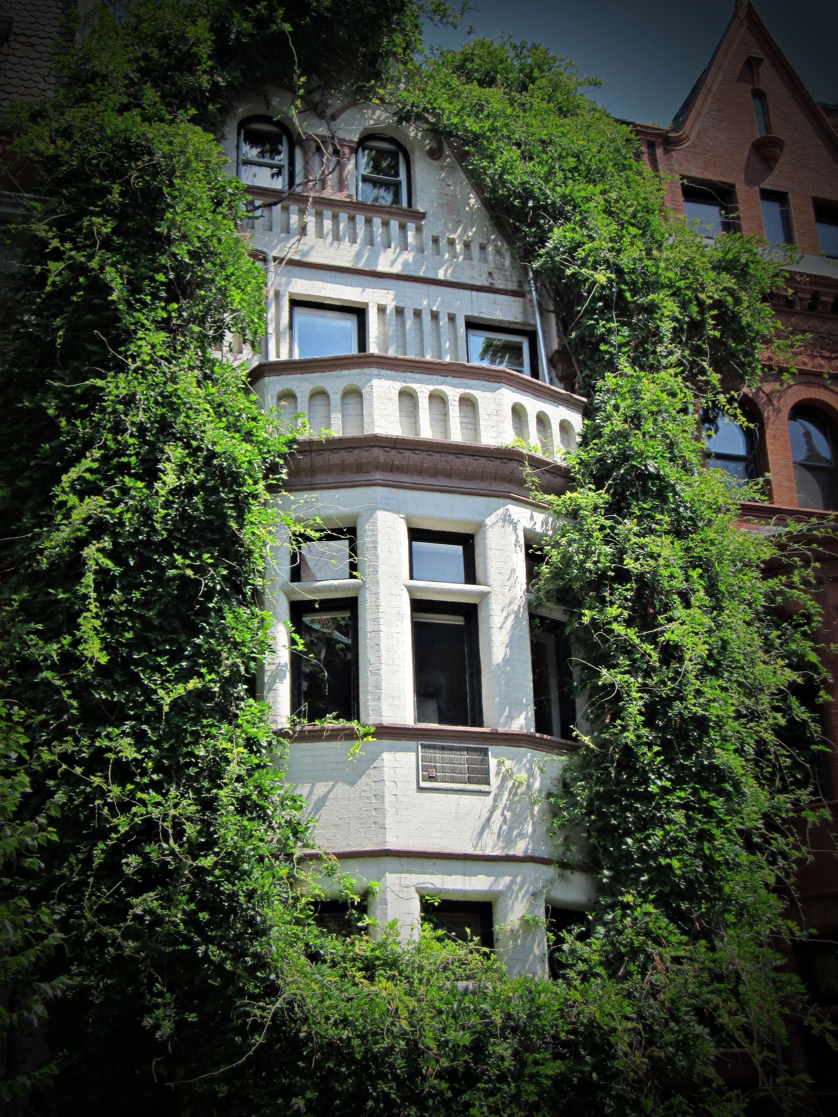 Nyc Windows By Relivingforever Rent Direct No Fee