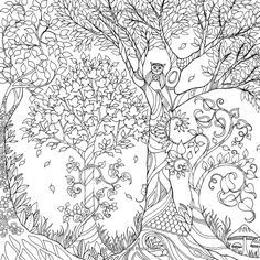 Enchanted Forest An Inky Quest Coloring Book Johanna Basford 9781780674889
