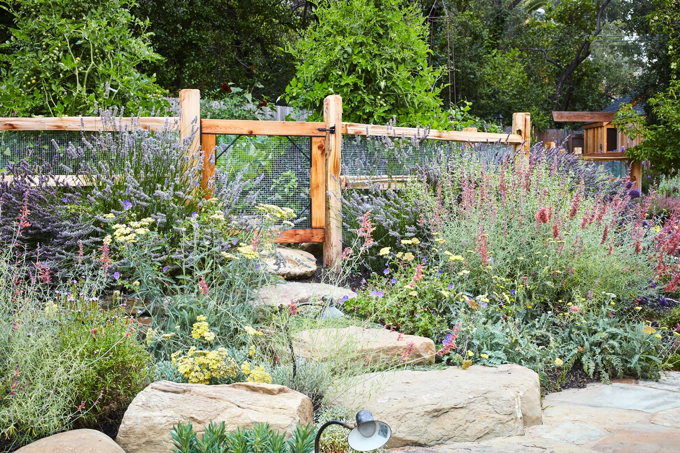 kitchen gardens homestead design collective i like the fence and gate garden inspiration on kitchen garden id=92095