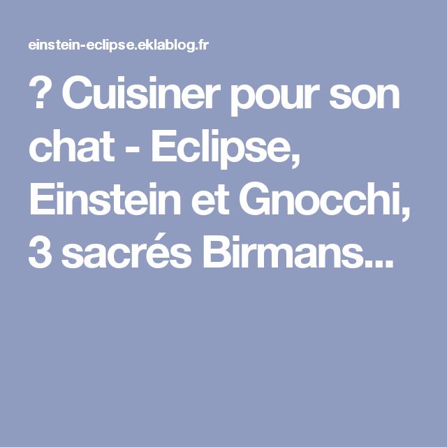 Cuisiner Pour Son Chat Eclipse Einstein Et Gnocchi 3 Sacres