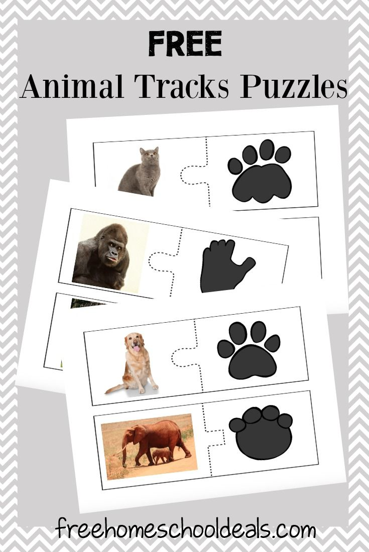 free animal tracks puzzles instant download animal free and