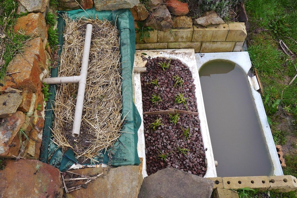 Greywater is a fabulous though often underused household