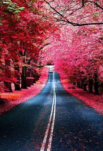 Beautiful. I love back roads vs interstate. It makes a drive more calming.