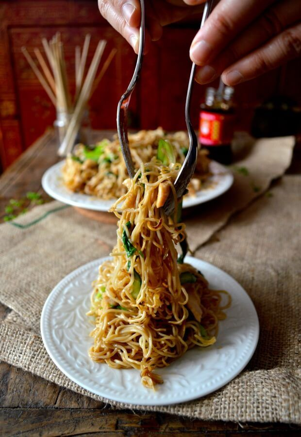 Chicken Pan Fried Noodles Gai See Chow Mein Recipe Pan Fried
