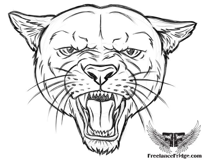 Coloring page cougar pages totem pinterest totems for Cougar coloring pages
