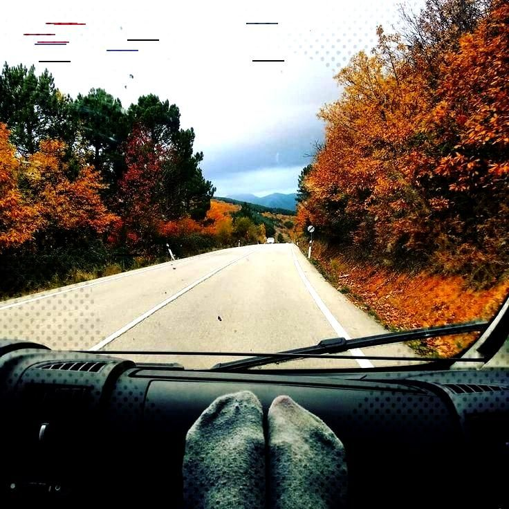 En busca del otoño. - - -  ...