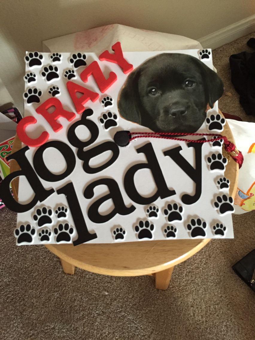 Cool Graduation Cap Black Adorable Dog - 3941a1b80b27dede8aeb6163325e6bbf  HD_304998  .jpg