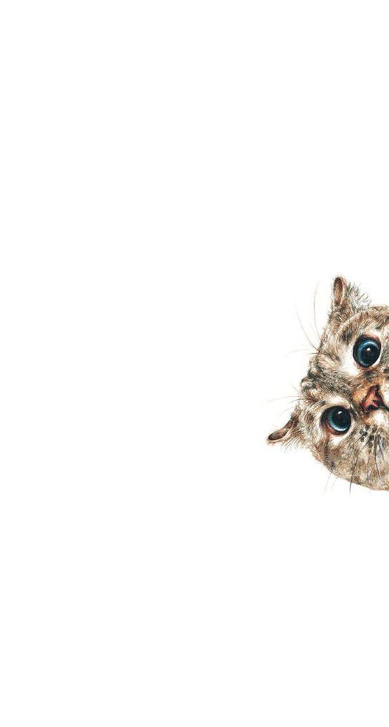 10 Beautiful Hd Wallpapers For Your Phone Sneaky Cat ส ตว ศ ลปะเก ยวก บแมว แมวน อย