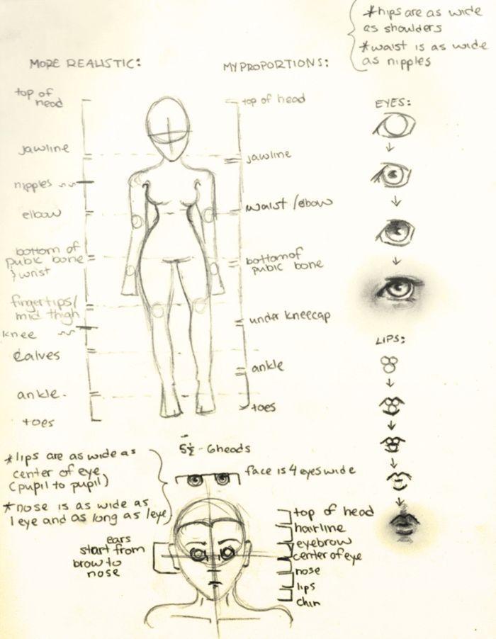 http://www.deviantart.com/art/Proportions-Tutorial-Female-139887652