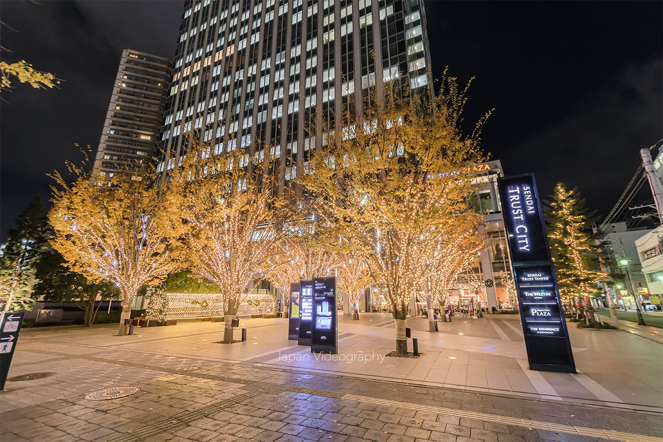 仙台トラストシティ ウィンターイルミネーション 2019-2020|宮城県仙台市  宮城県仙台市のトラストシティプラザ前広場などで開催するウィンターイルミネーション 2019-2020を紹介します。仙台の冬の風物詩として行われているトラストシティのイルミネーションは2019年も開催。約5万5000球のLED電球で明るく幻想的に彩ります。