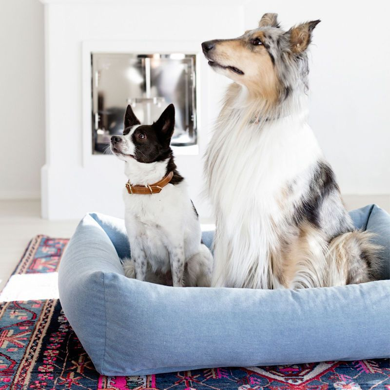 Finnish Lifestyle Brand Kind Is Aiming To Bring Nordic Style Wares To The Dogs Using Sustainable Materials That Combine Comfort An Dog Cat Modern Pet Dog Milk