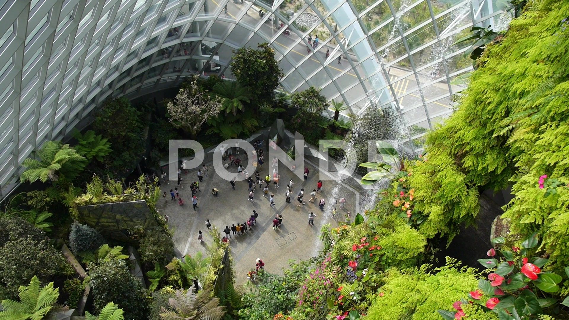 3942d746dae2b4ef88812bbe1d24d397 - Gardens By The Bay Valentine's Day