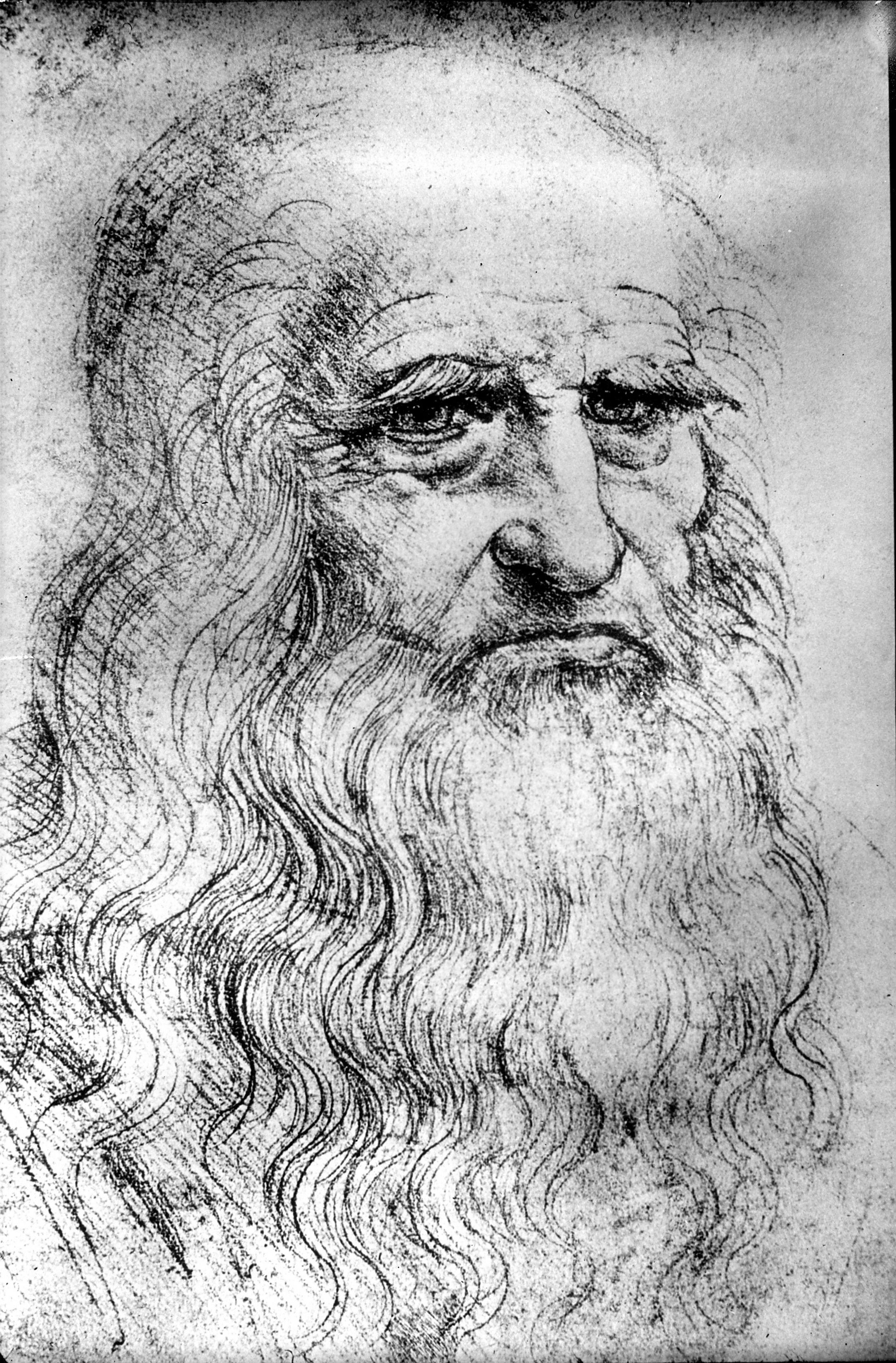 Biography of Leonardo da Vinci. Leonardo da Vinci: interesting facts of life, achievements 41