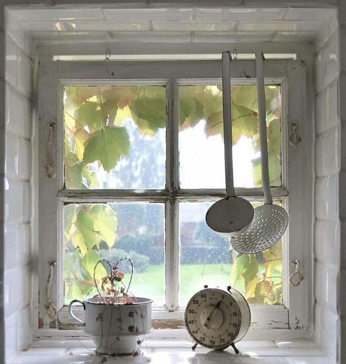 Love the window
