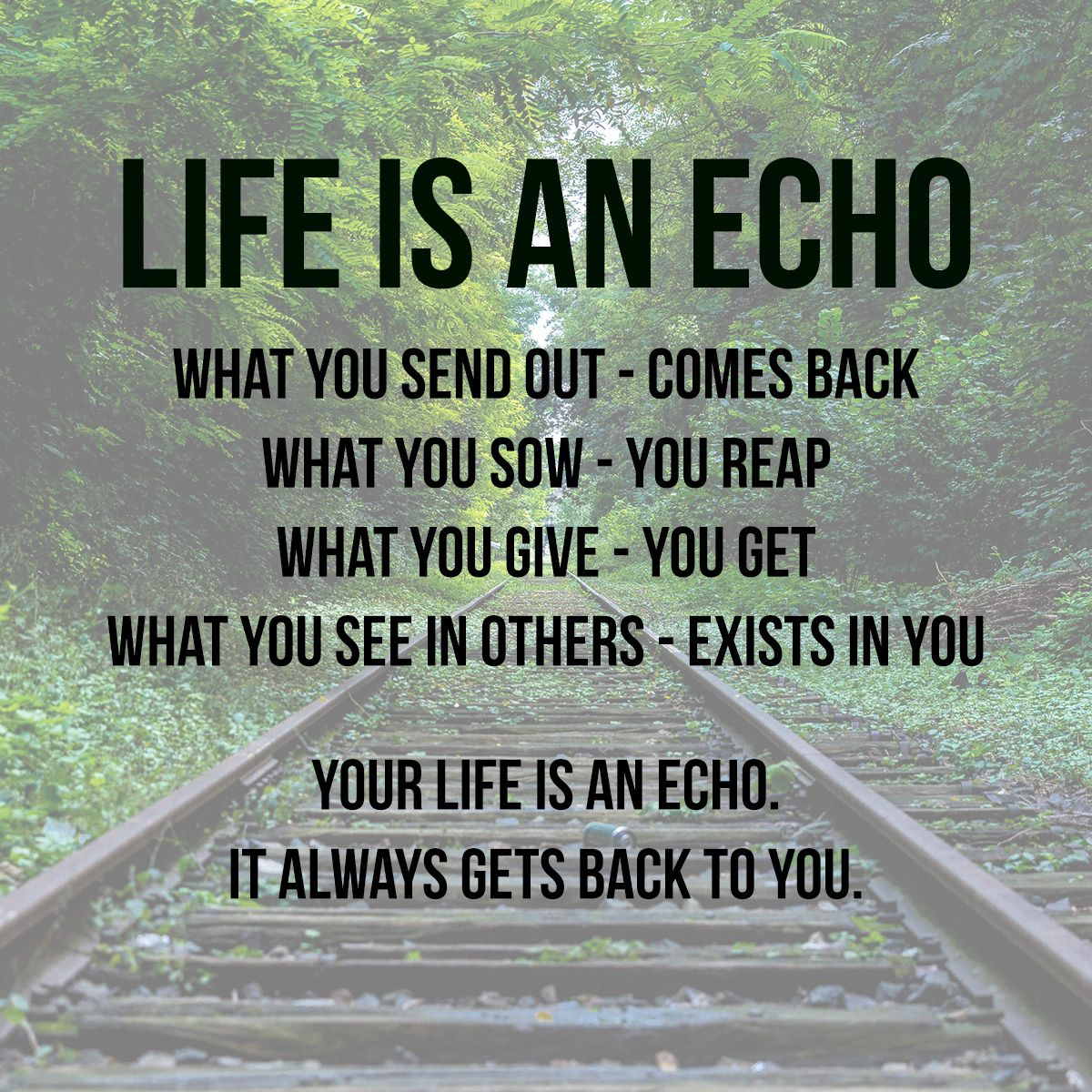 Life Is An Echo Quote Life Is An Echo Inspirational Inspirationalquotes