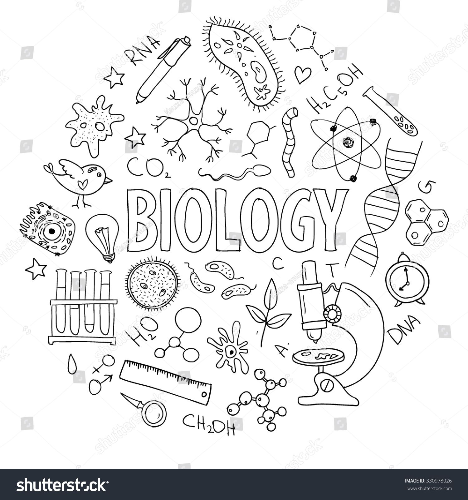 Hand Drawn Vector Set With School Equipment Can Be Used
