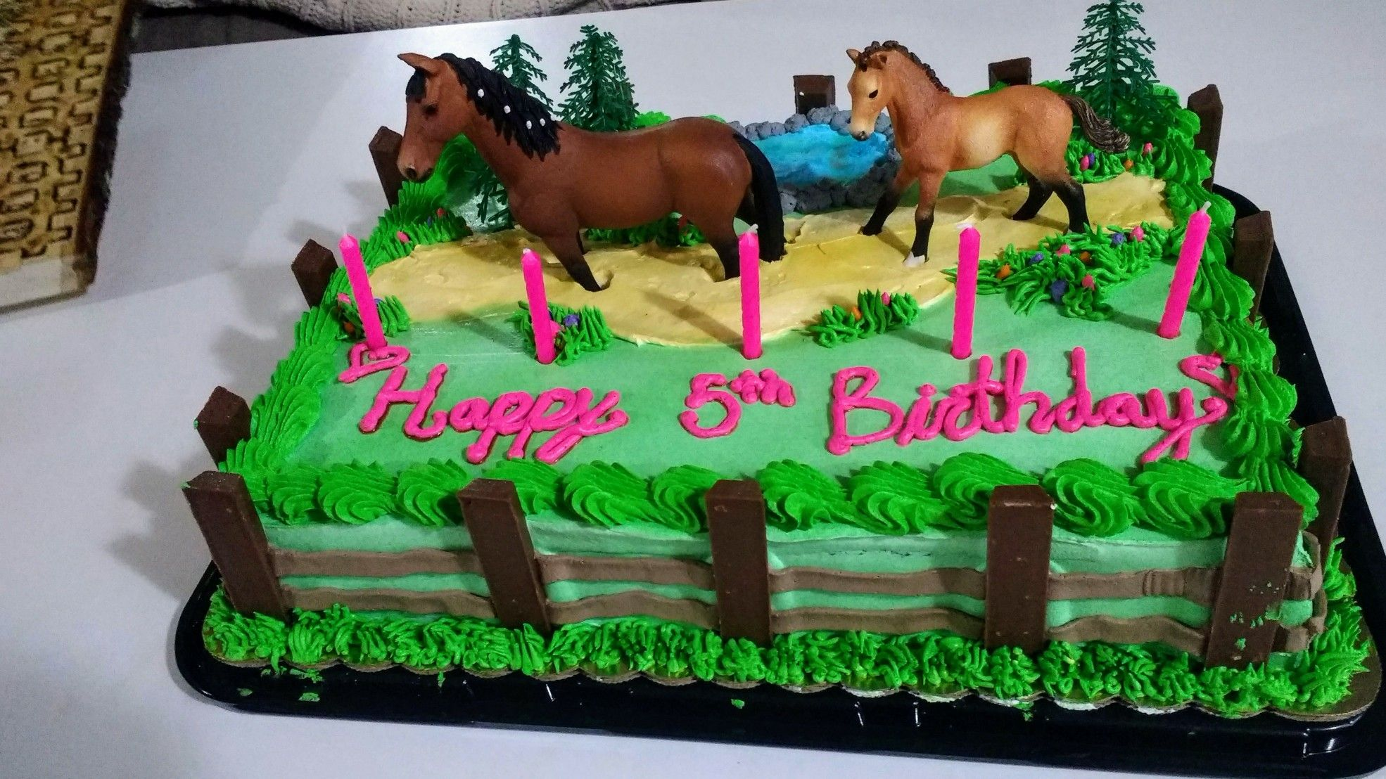 Peachy Girls Horse Birthday Cake Kitkat Fencing Sheet Cake With Birthday Cards Printable Giouspongecafe Filternl