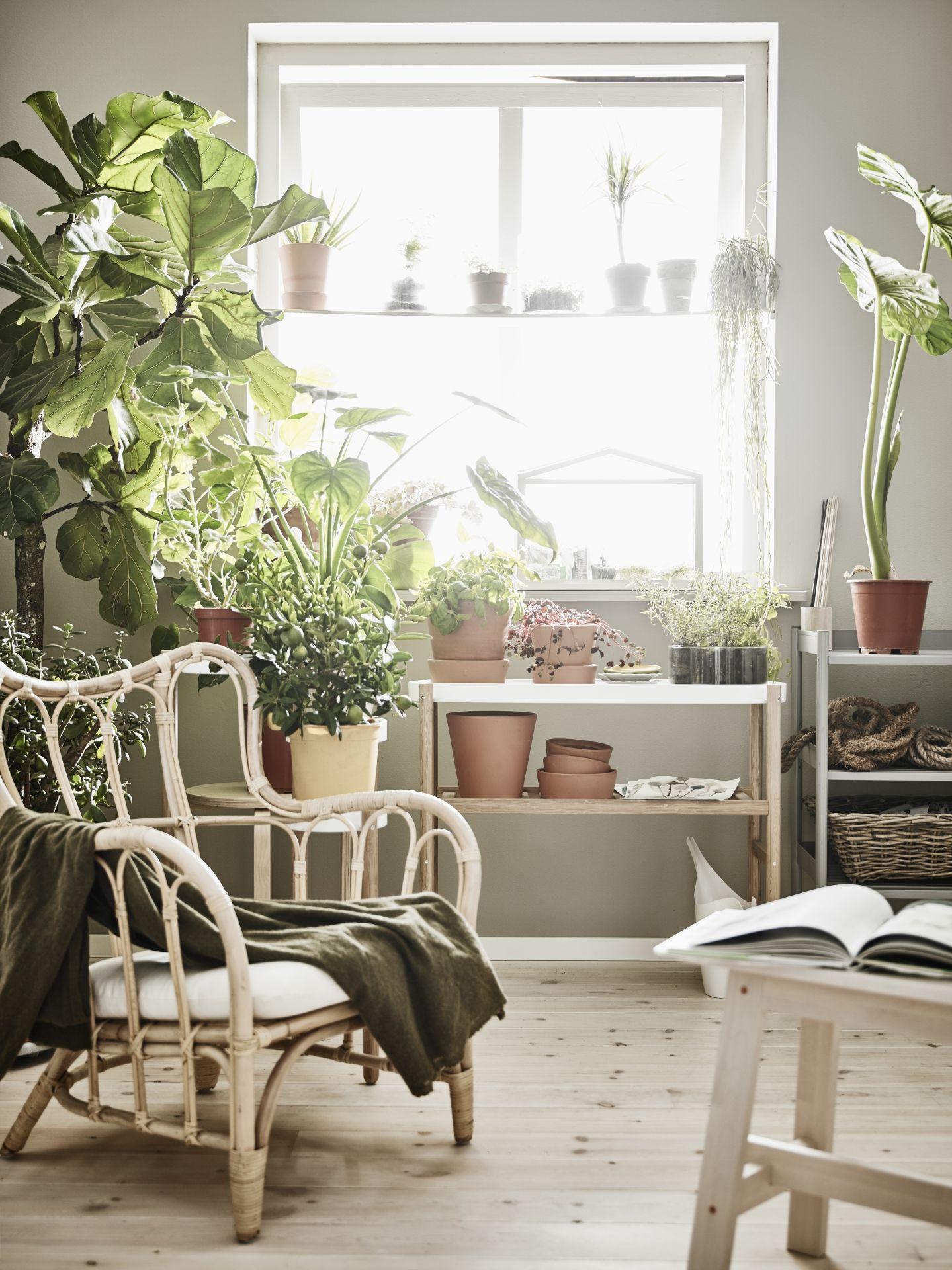 MASTHOLMEN Fauteuil, buiten | Ikea design, Interiors and Catalog