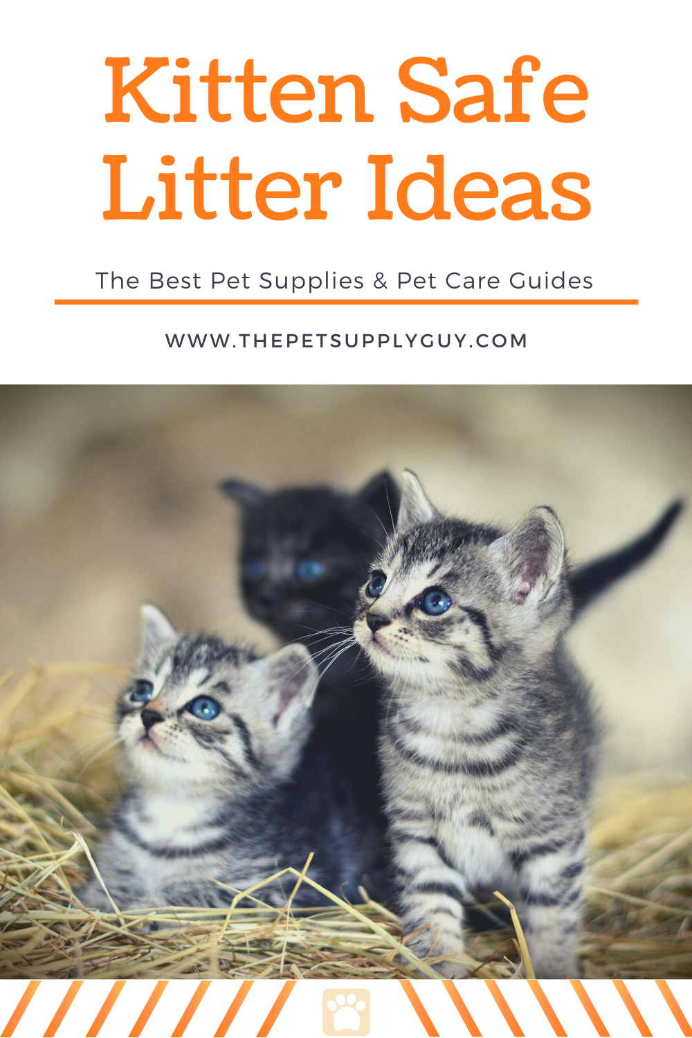 Best Cat Litter For Kittens Buying Guide Thepetsupplyguy Pet Pets Animal Cat Cats Feline Kitten Kittens