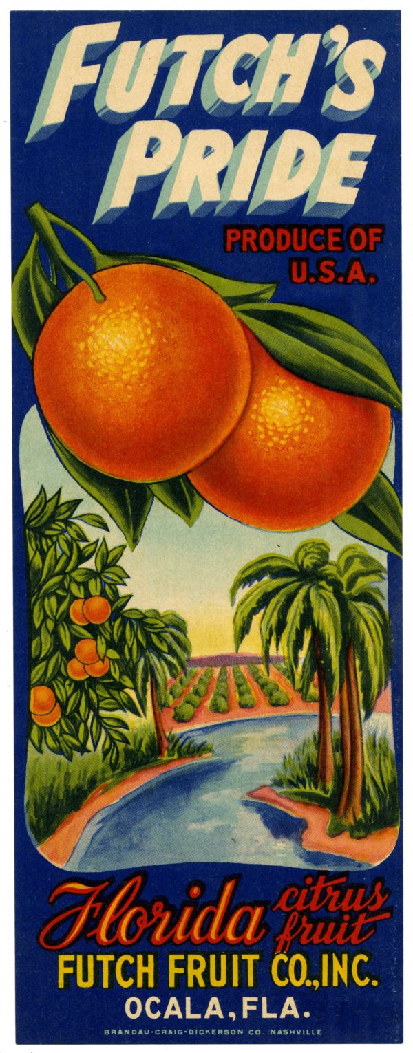 Frostproof Florida Keen/'s Pride Orange Citrus Fruit Crate Label Art Print