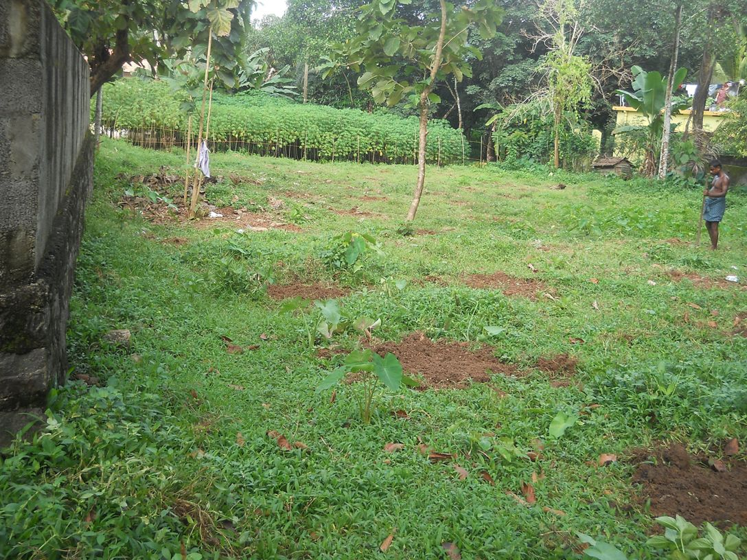 Residential Land For Sale in Kottayam,Kerala-Sichermove  Resediential land for sale in ettumanoor,kottayam. Find land,flats and apartments in India's best property portal sichermove.com