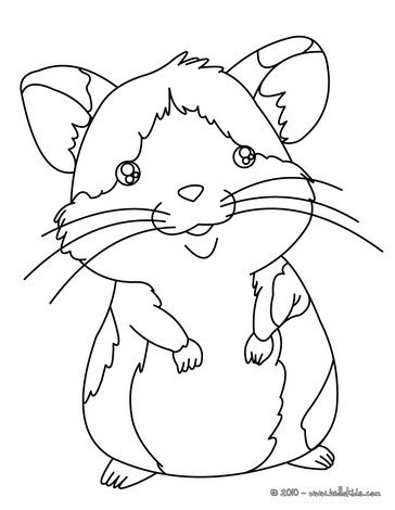 Hamster coloring page | Birthday Cakes | Pinterest