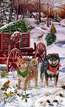 "New for 2012! Shiba Inu Christmas Holiday Cards are 8 1/2"" x 5 1/2"" and come in packages of 12 cards. One design per package. All designs include envelopes, your personal message, and choice of greeting. Select the inside greeting of your choice from the menu below.Add your custom personal message to the Comments box during checkout."