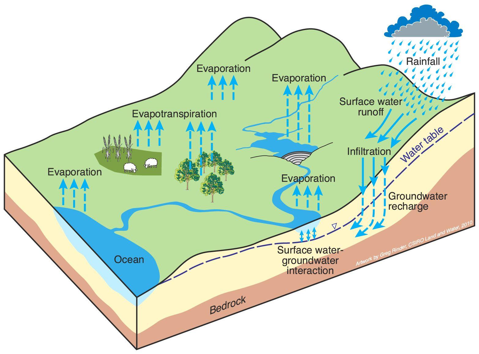 Pin Van Nitin Gadia Op Environmental Footprint Infographic