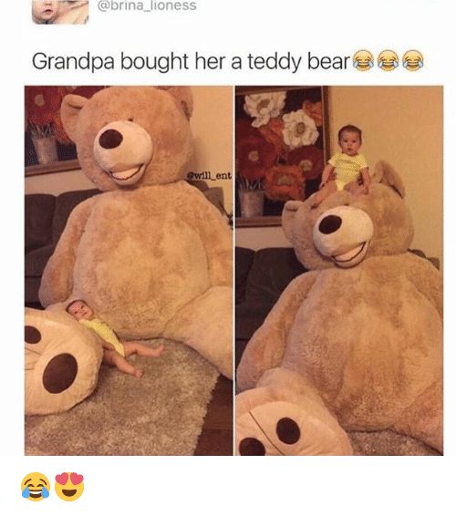 15 Teddy Bear Memes That Are Cute And Funny At The Same Time In